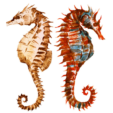 Beautiful image with nice watercolor seahorses