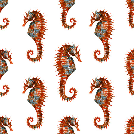 decorum: Beautiful pattern with nice watercolor seahorses