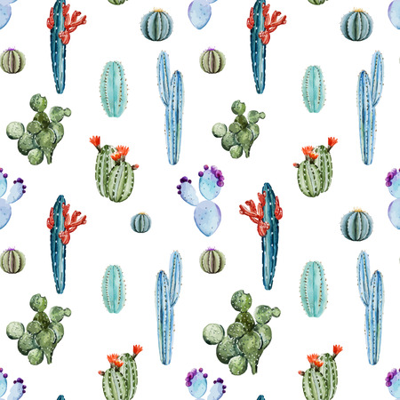 cactus cartoon: Beautiful image with nice watercolor cactus Illustration