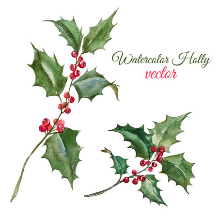 Beautiful image with nice watercolor christmas holly flower