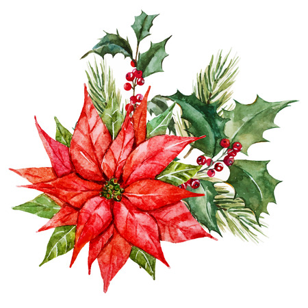 Mooi beeld met mooie aquarel kerst bloemen