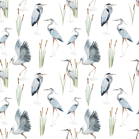 botanical drawing: Beautiful pattern with nice watercolor herons