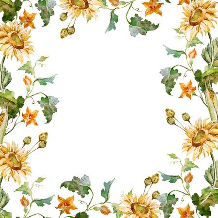 girasol: Marco del vector hermosa con bonito girasoles y nasturtsia