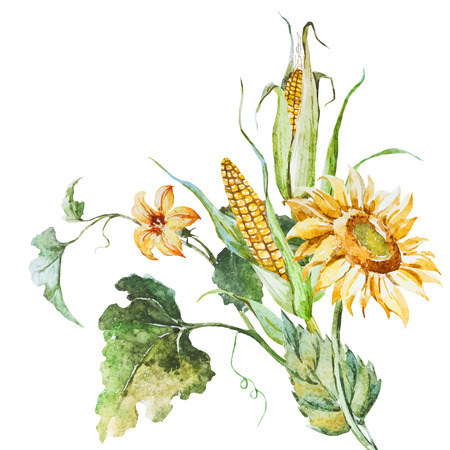corn: Beautiful vector image with nice watercolor autumn floral bouqet