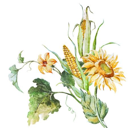 mazorca de maiz: Imagen hermosa del vector con buena acuarela otoño bouqet de flores