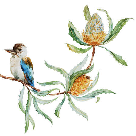 tropical bird: Beautiful vector image with nice australian kookaburra bird