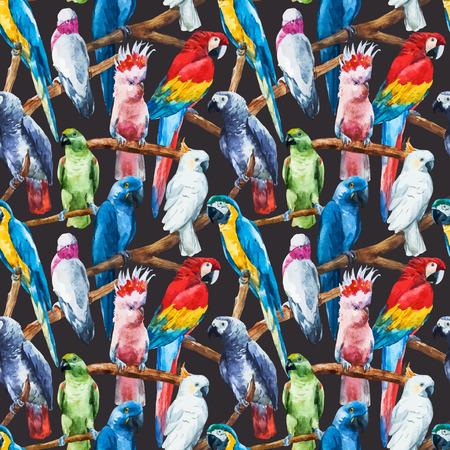 papagayo: Imagen hermosa del vector con bonitos loros acuarela Vectores