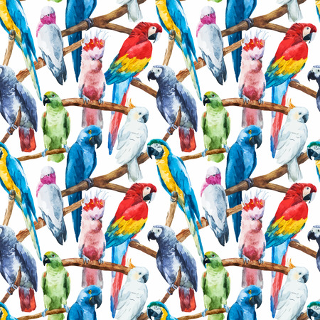 loros verdes: Imagen hermosa del vector con bonitos loros acuarela Vectores
