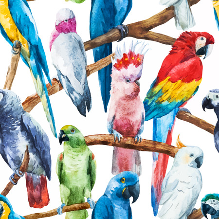 seamless: Beautiful vector image with nice watercolor parrots