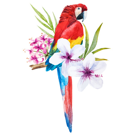 Beautiful vector image with nice watercolor parrot