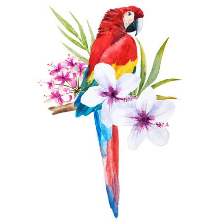 Piękna grafika wektorowa z miłą akwareli papuga Ilustracje wektorowe