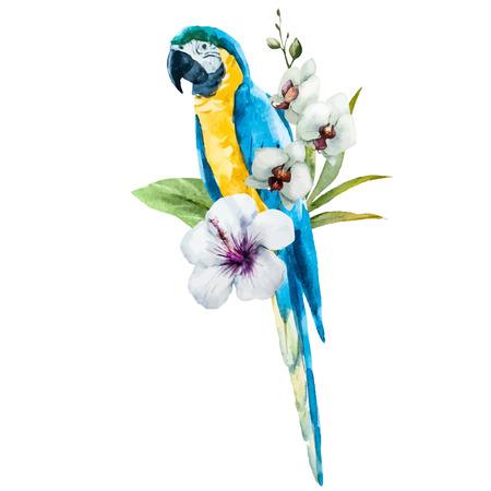 Schöne Vektor-Bild mit schönen Aquarell Papagei