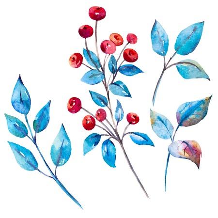 Beautiful vector image with nice watercolor berries