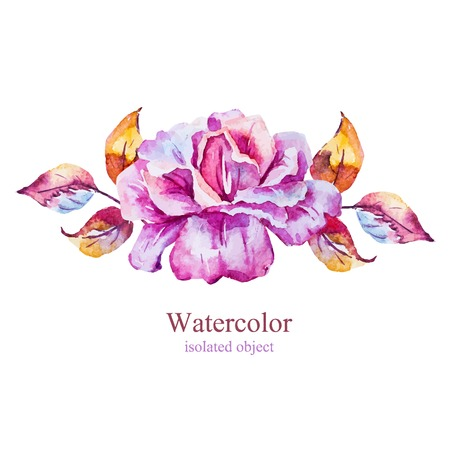 painted: Beautiful vector image with nice watercolor rose