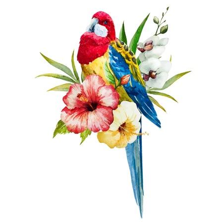 Mooie vector afbeelding met mooie aquarel rosella vogel Stock Illustratie