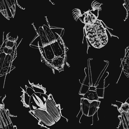 beetles: Beautiful vector pattern with nice different beetles