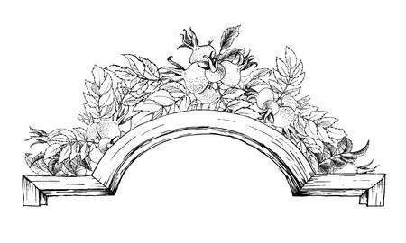 vintage rose: Beautiful vector image with nice vintage floral frame