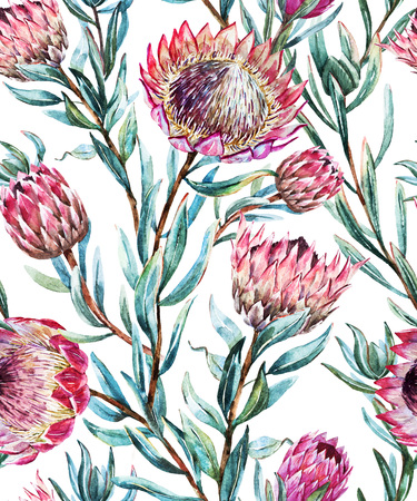 bank branch: Beautiful vector pattern with nice watercolor tropical protea flower