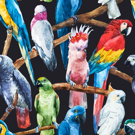 Beautiful raster image with nice watercolor parrots