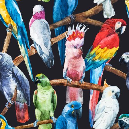 Beautiful raster image with nice watercolor parrots Banco de Imagens - 46341861