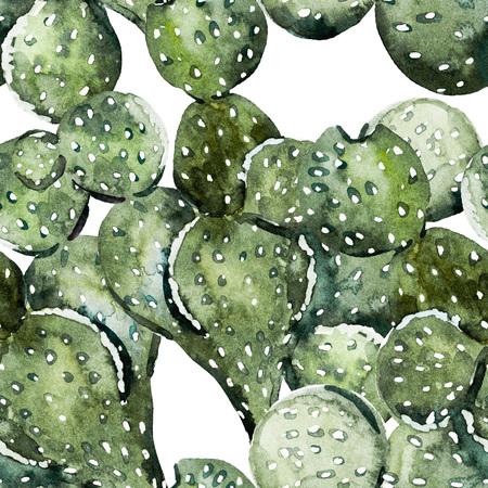 素敵な水彩画サボテンと美しいラスター イメージ