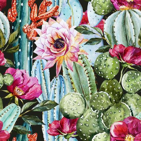 desierto: Imagen hermosa de la trama con un bonito cactus acuarela