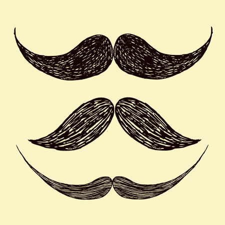 groomed: Beautiful vector image with nice vector mustache Illustration
