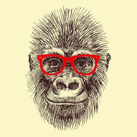 apes: Beautiful vector image with nice monkey with different elements