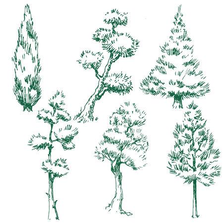 arbol de pino: conjunto de imágenes vectoriales con árboles agradables Vectores