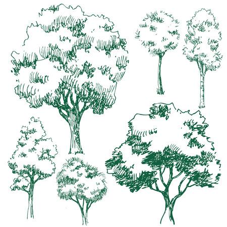 arboles secos: conjunto de imágenes vectoriales con árboles agradables Vectores
