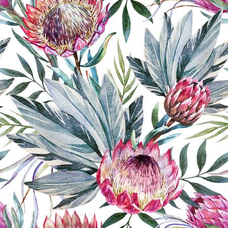 좋은 수채화 열대 프로 테아 꽃과 함께 아름 다운 래스터 패턴 스톡 콘텐츠