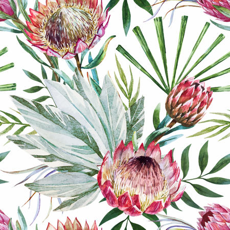 tropical background: Beautiful vector pattern with nice watercolor tropical protea flowers Illustration