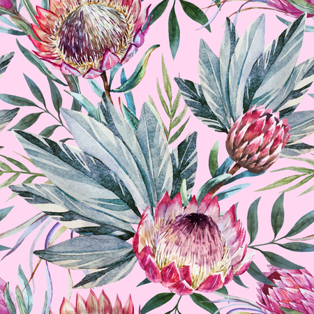 Beautiful vector pattern with nice watercolor tropical protea flowers Ilustracja
