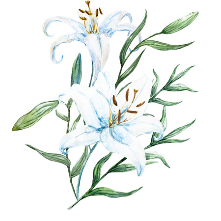 Beautiful raster image with nice hand drawn watercolor lilies 스톡 콘텐츠