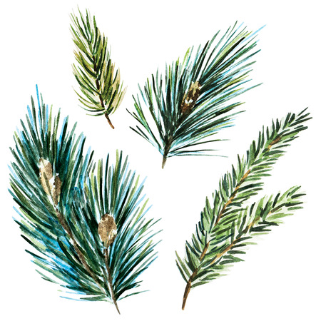 branch isolated: Beautiful raster image with nice watercolor fir-tree branches Stock Photo