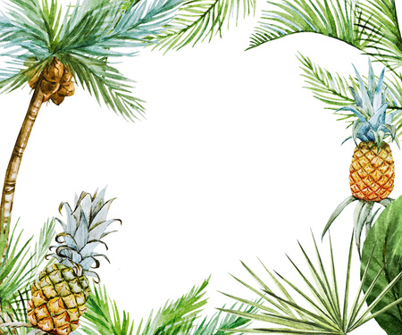 palm fruits: Beautiful raster image with nice watercolor tropical frame