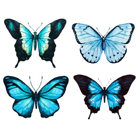 mariposas amarillas: Imagen hermosa del vector con bonitas mariposas acuarela