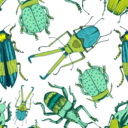 Beautiful vector pattern with nice hand drawn beetles