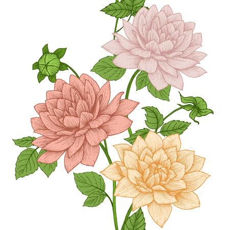 dessin fleur: Belle image vectorielle avec belle dessiné à la main motif floral