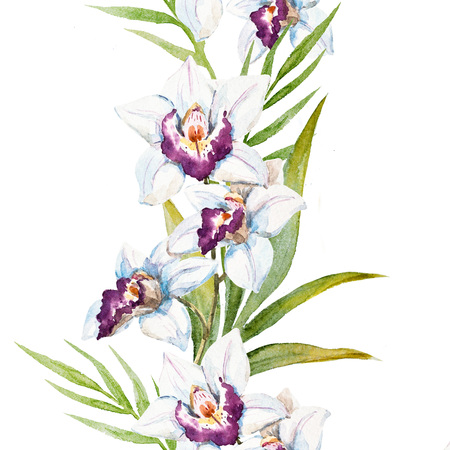 tera: Beautiful raster image with nice watercolor orchid flowers Stock Photo