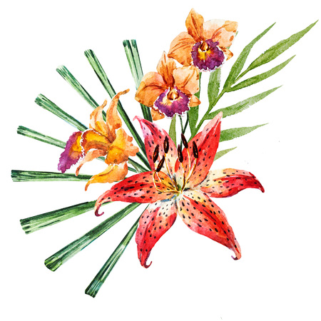 strelitzia: Beautiful raster image with nice hand drawn watercolor lilies Stock Photo