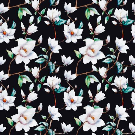 magnolia flowers: illustreated watercolor magnolia flowers Illustration