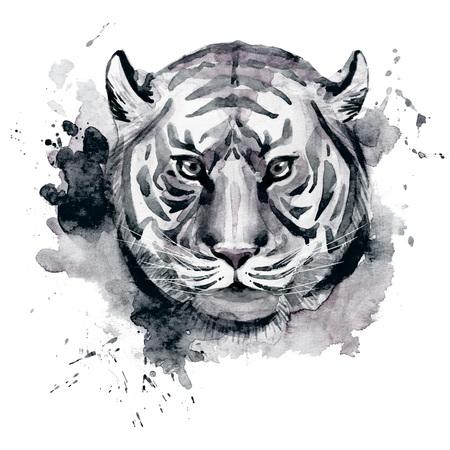 silueta tigre: Beautiful raster image with nice watercolor tiger