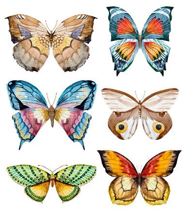 mooi beeld raster met getrokken mooie aquarel hand vlinders