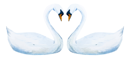 Beautiful image with nice watercolor hand drawn swans