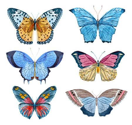 Beautiful raster image with nice watercolor hand drawn butterflies Imagens - 53507482