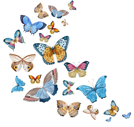 Beautiful raster image with nice watercolor hand drawn butterflies