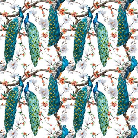peacock feathers: Modelo hermoso del patrón de la trama de la acuarela de la trama de pavo real Foto de archivo