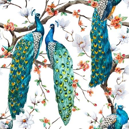 patrones de flores: Modelo hermoso del patrón de la trama de la acuarela de la trama de pavo real Foto de archivo