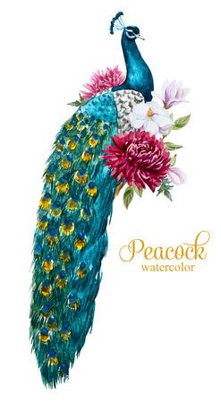 Piękny obraz z ładnym Akwarele ręcznie rysowane paw z kwiatów